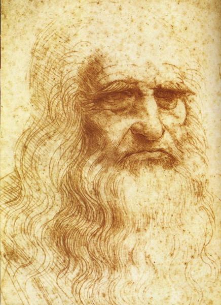 Есть точка зрения, что это ненастоящий портрет Леонардо.