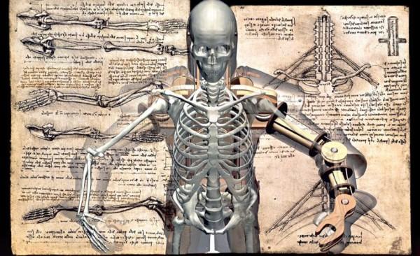 Физиология человека и робот Леонардо да Винчи