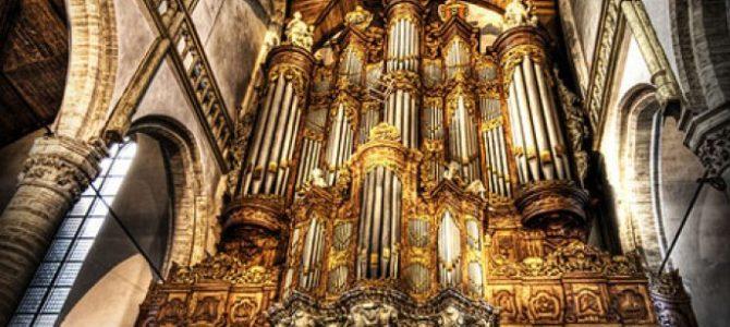 История создания органа